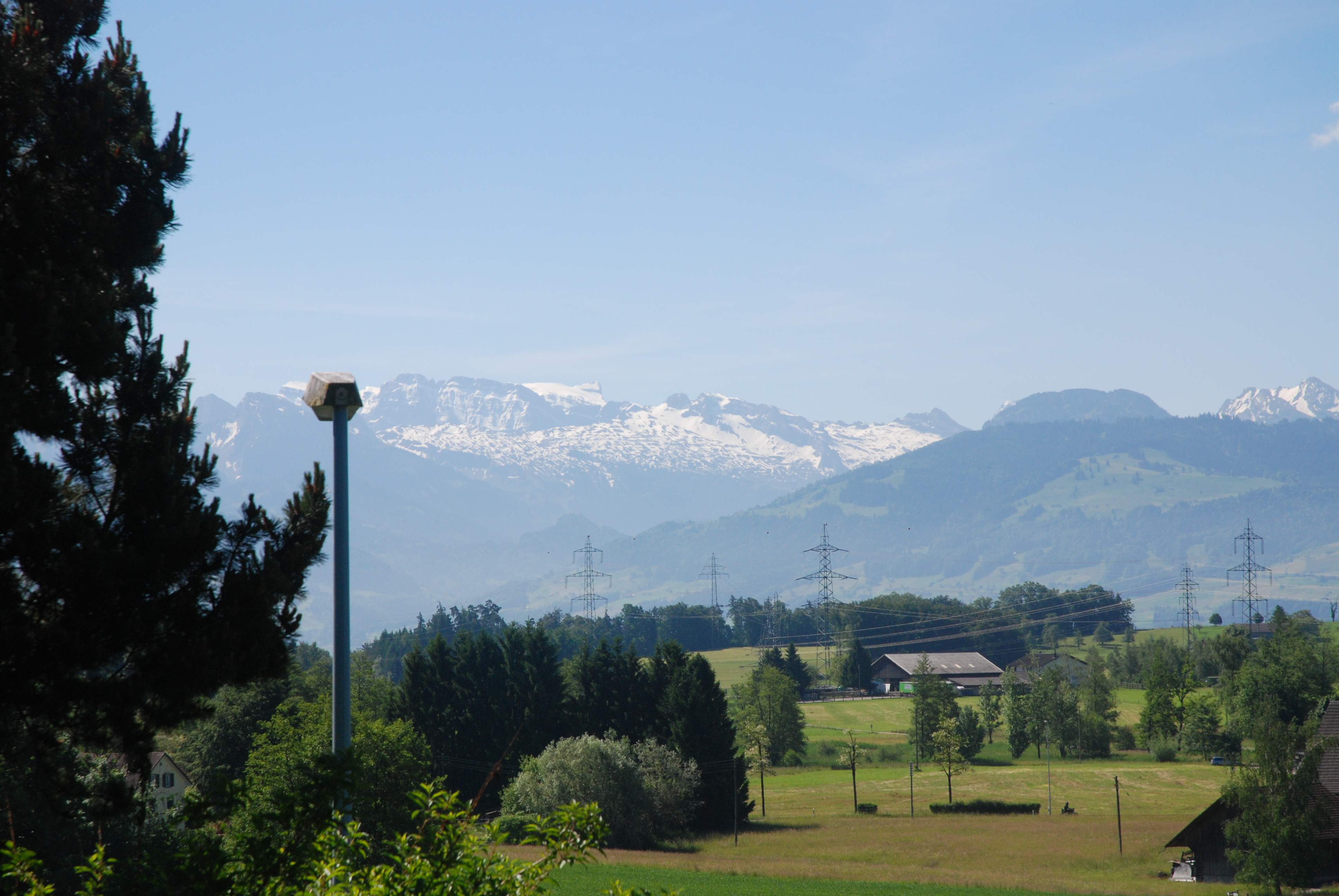 This is aunty Ditha's backyard. This was the sight we wake up to every morning while at Zurich.
