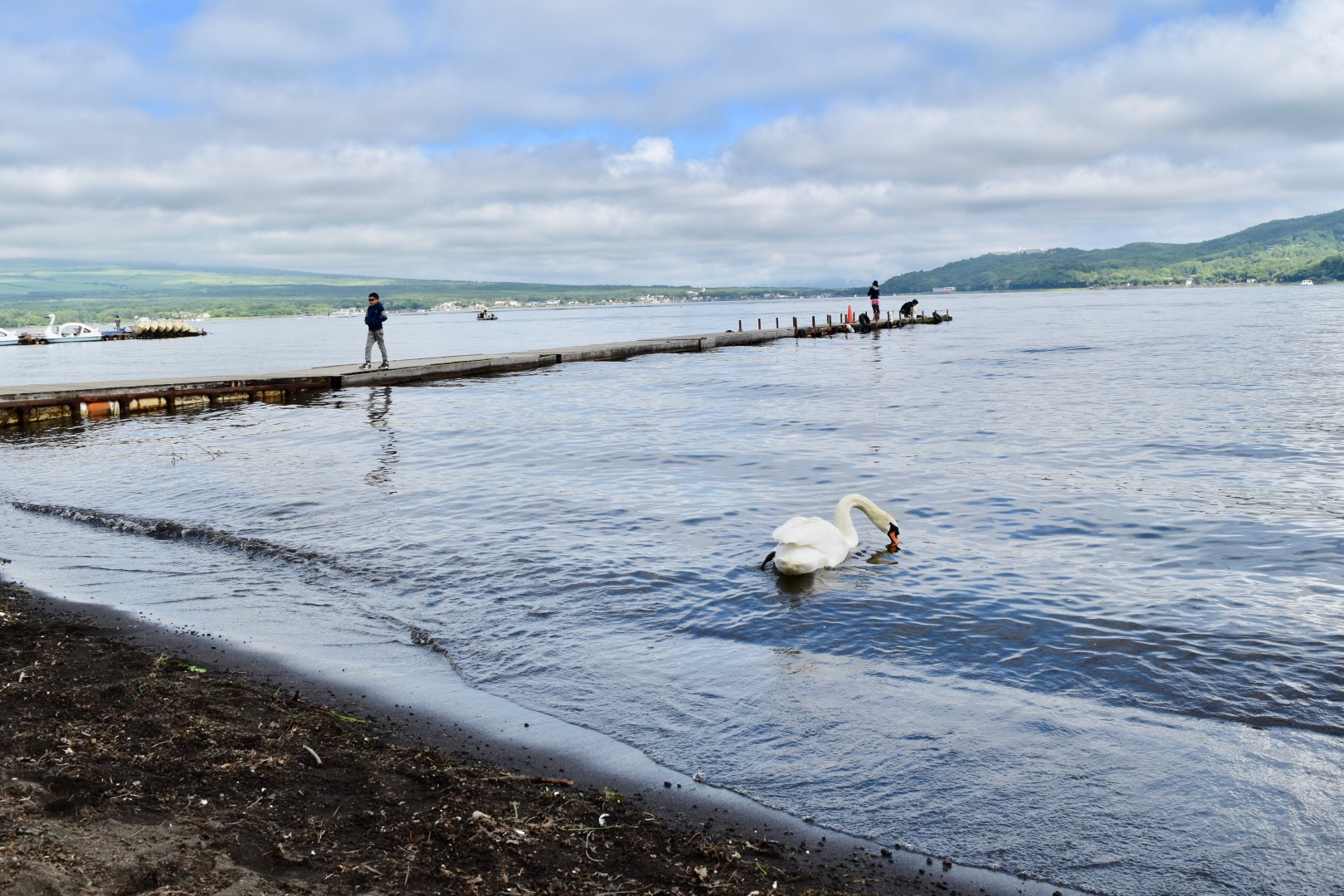 Camping in Lake Yamanaka Mount Fuji - We Travel Happy